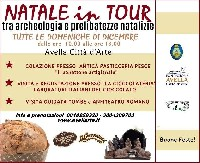 Natale in Tour